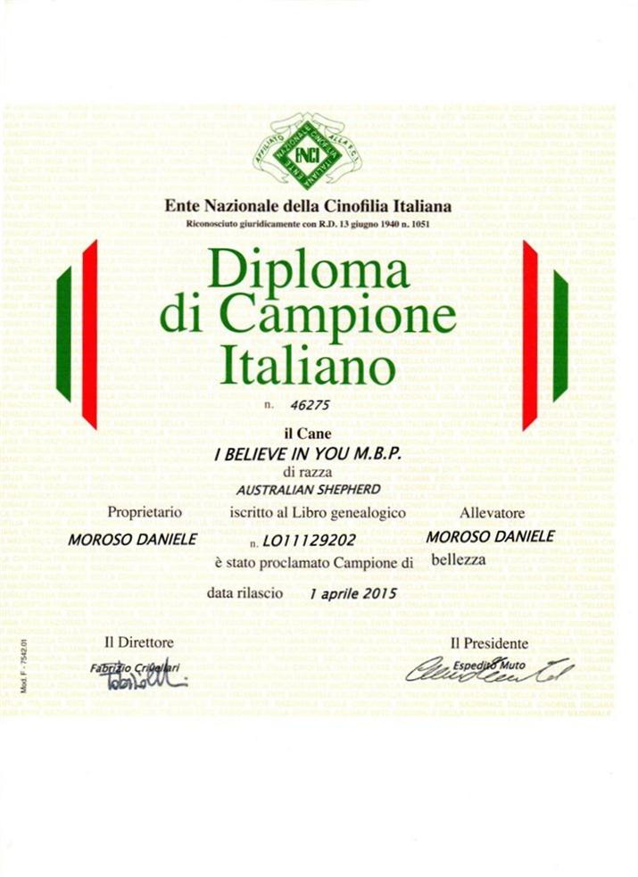 diploma CH IT